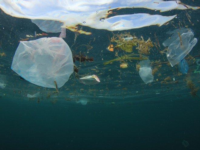 marine litter resized.jpg